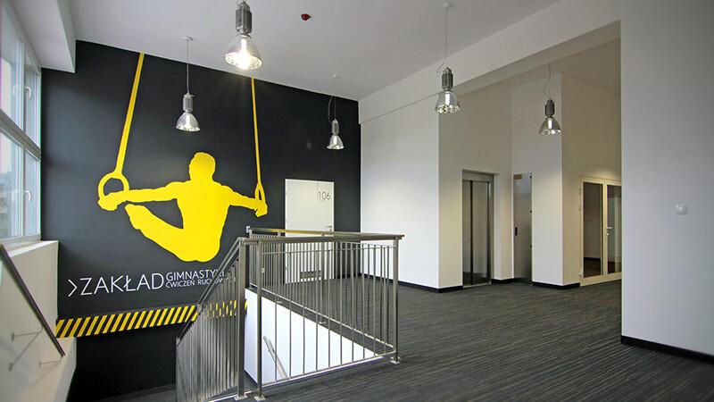 Projekt wnętrza Zakadu Gimnastyki AWF